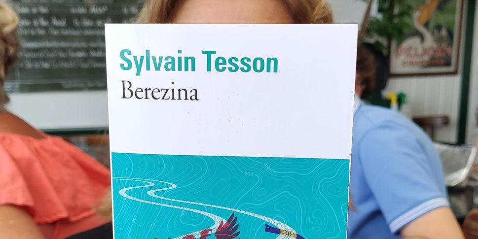 """Couverture du livre """"Berezina"""""""